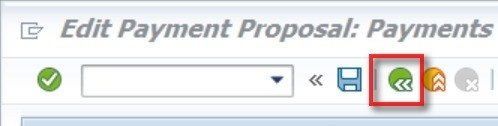 Payment Run- Next, we have to click on payment run and click on start immediately and click on the green arrow.