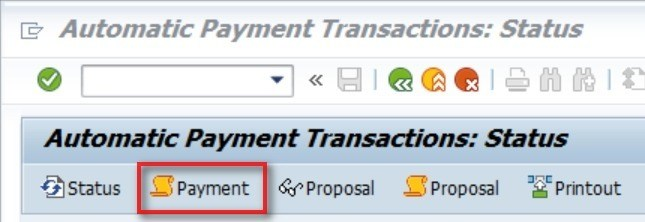 This will show the payment document number. This screen is also very helpful in identifying any errors.