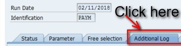 Select the three boxes shown below. These boxes just show you additional info for the payment runs. This helps in identifying an errors. Vendor- enter the same vendor numbers that you entered on the parameters screen.