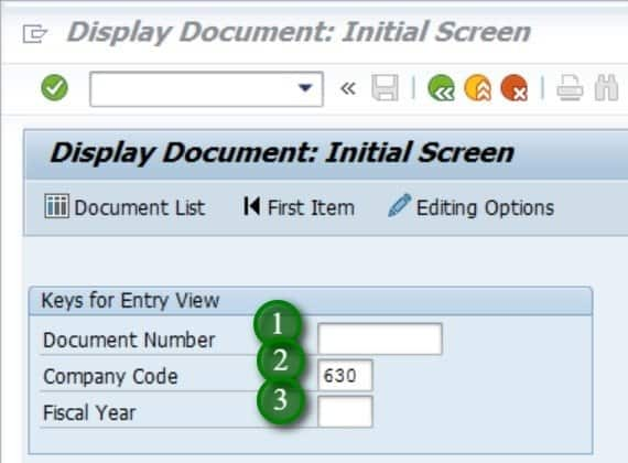 or if you don't know the document number, click on document list and enter any criteria by which you can search for the document you parked. E.g. I entered the company code, entry date and checked the box of own documents only