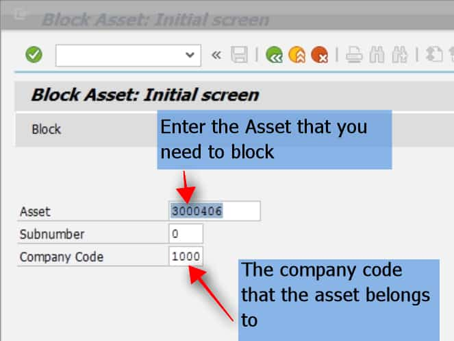 After entering the asset and the company code, click on enter